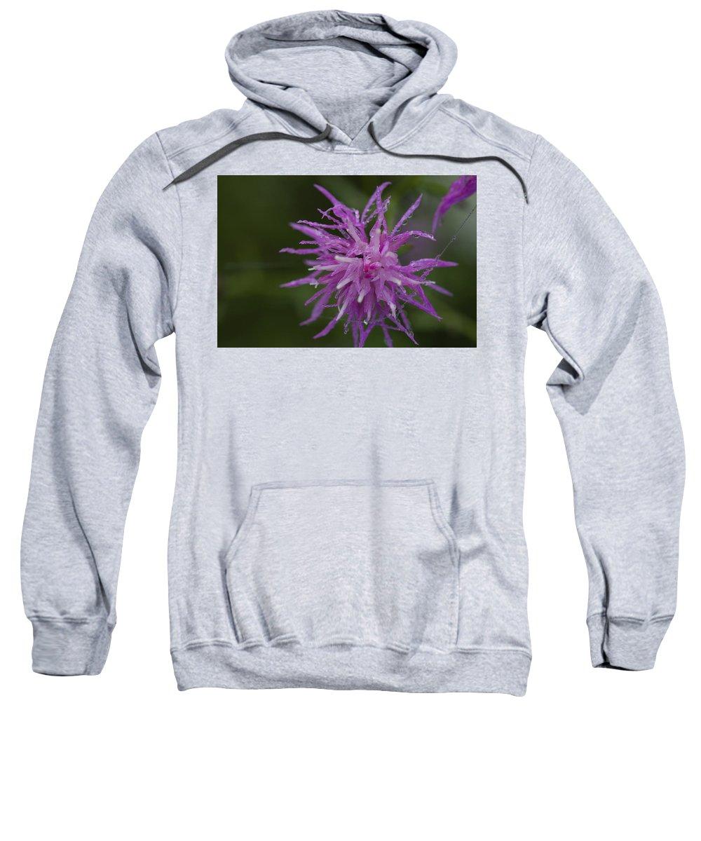 Purple Sweatshirt featuring the photograph Morning Pearls by David Lyon