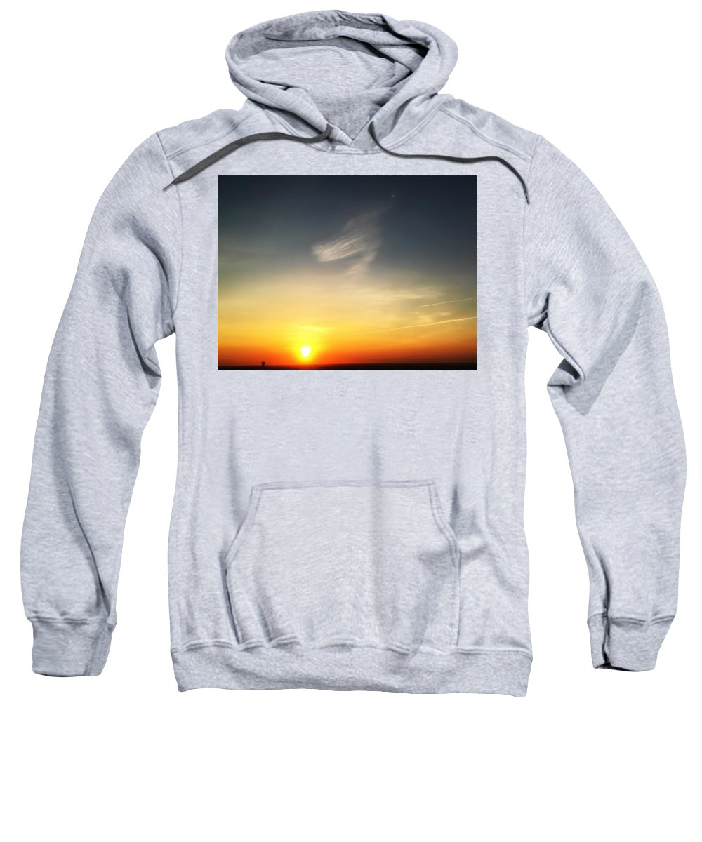 Dog Sweatshirt featuring the photograph Morning Pup by Kate McGlynn