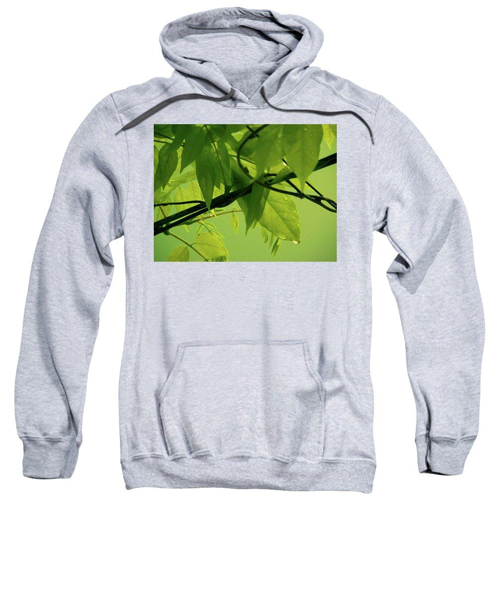 Rain Sweatshirt featuring the photograph Morning Rain by Angela Wright