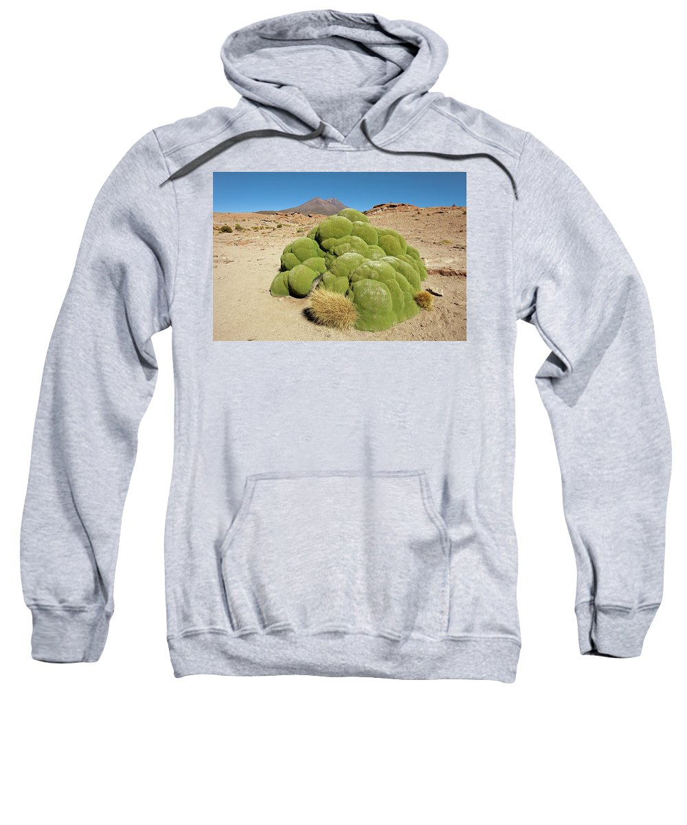 Moss Sweatshirt featuring the photograph Moss Covered Rocks by Aivar Mikko