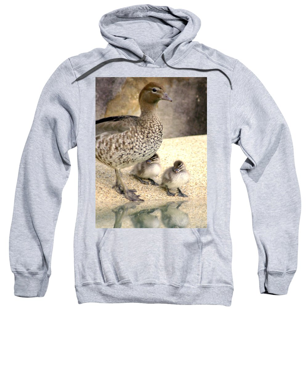 Animals Sweatshirt featuring the photograph Mother Of Twins by Holly Kempe