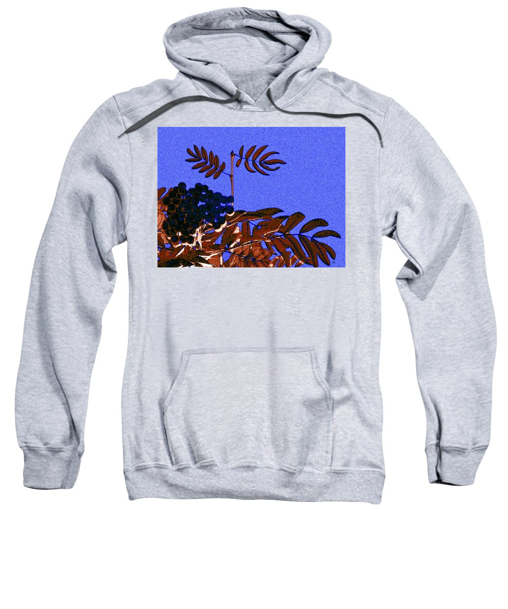 Abstract Sweatshirt featuring the digital art Mountain Ash Design by Will Borden