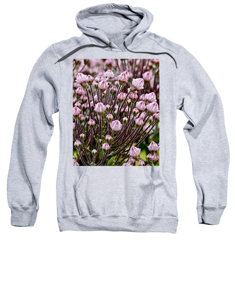 Flowers Sweatshirt featuring the photograph Mountain Laurel Bush by Carol F Austin