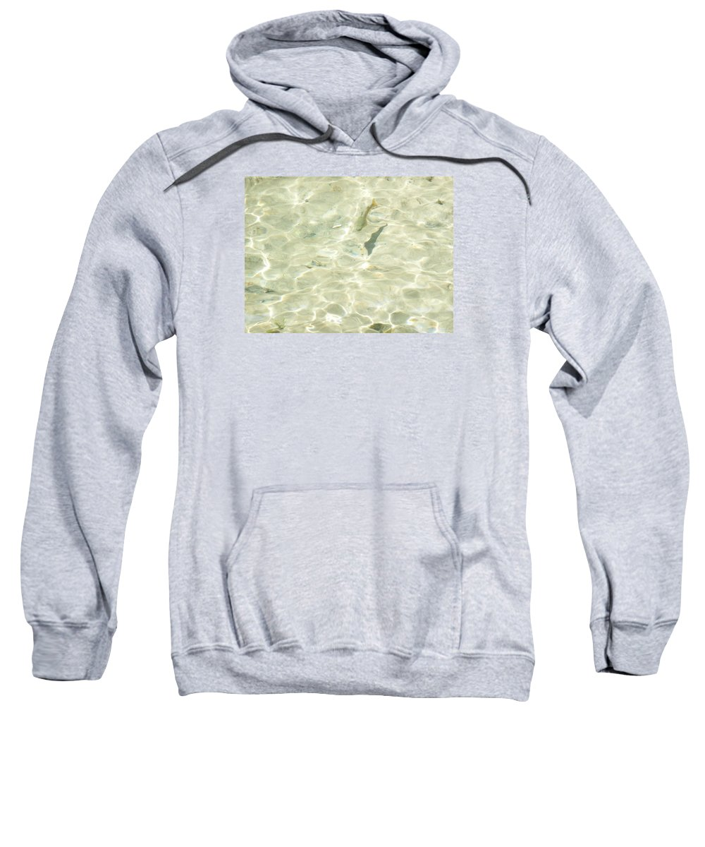 Trout Sweatshirt featuring the photograph Mountain Stream Trout by Ruth Kamenev