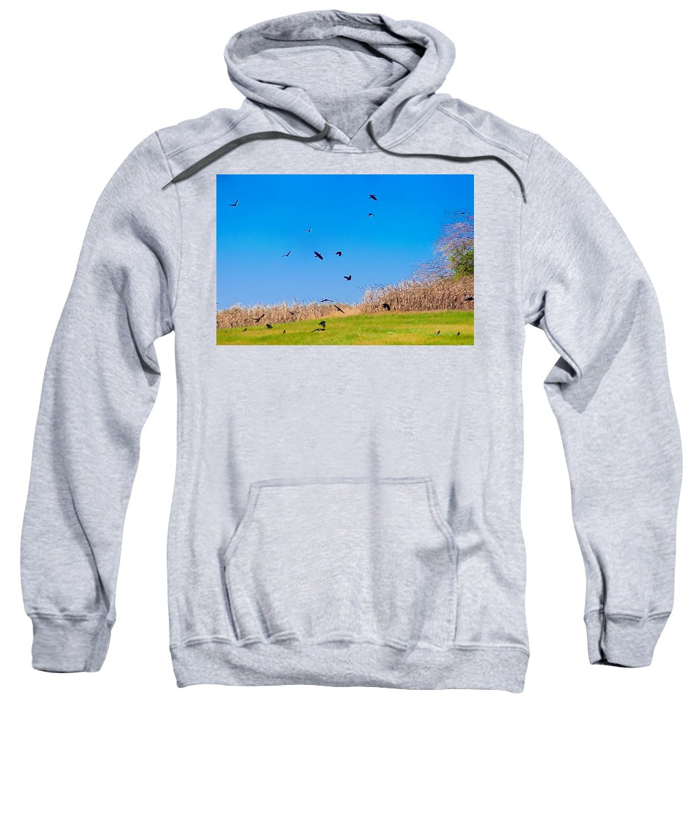 Crows Sweatshirt featuring the photograph Murder Of Crows by Bill Cannon