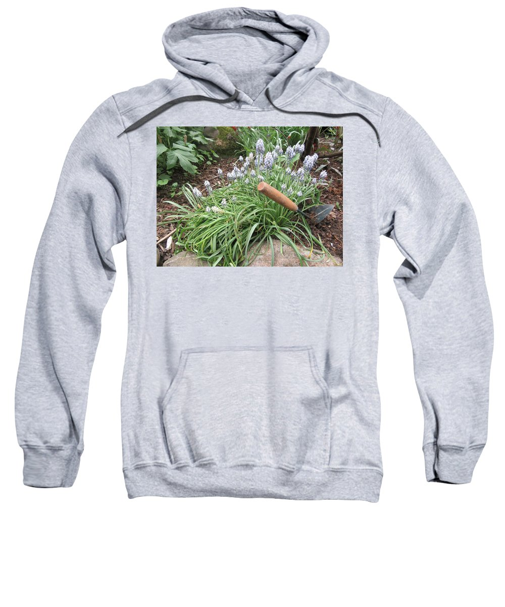 Spring Sweatshirt featuring the photograph Muscari Blend Blue And White by Lyssjart Sj