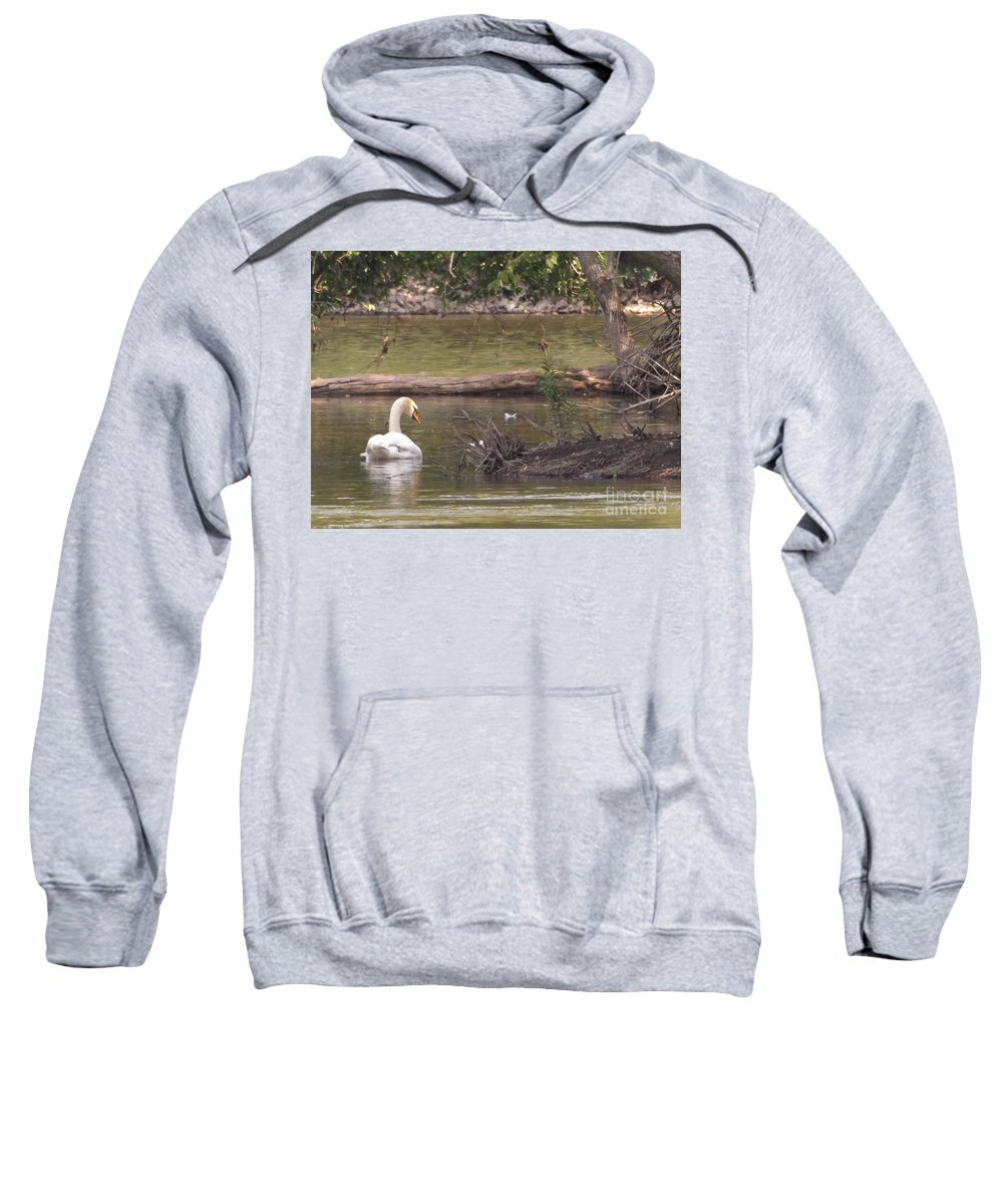 Water Fowl Sweatshirt featuring the photograph Mute Swan     St. Joe River     June     Indiana by Rory Cubel