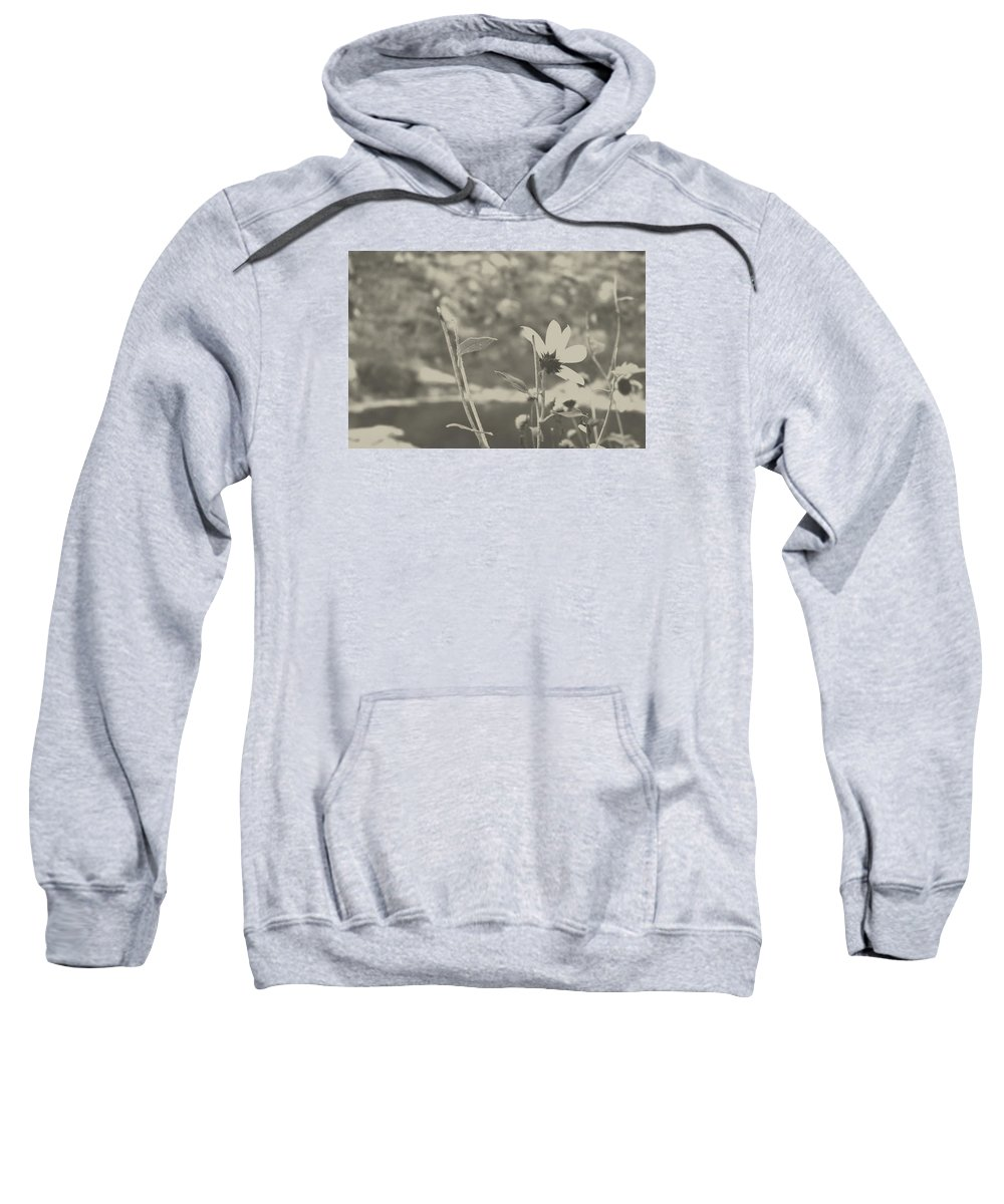 Digital Sweatshirt featuring the photograph Muted Beauty 1 by Sarah Jane Thompson