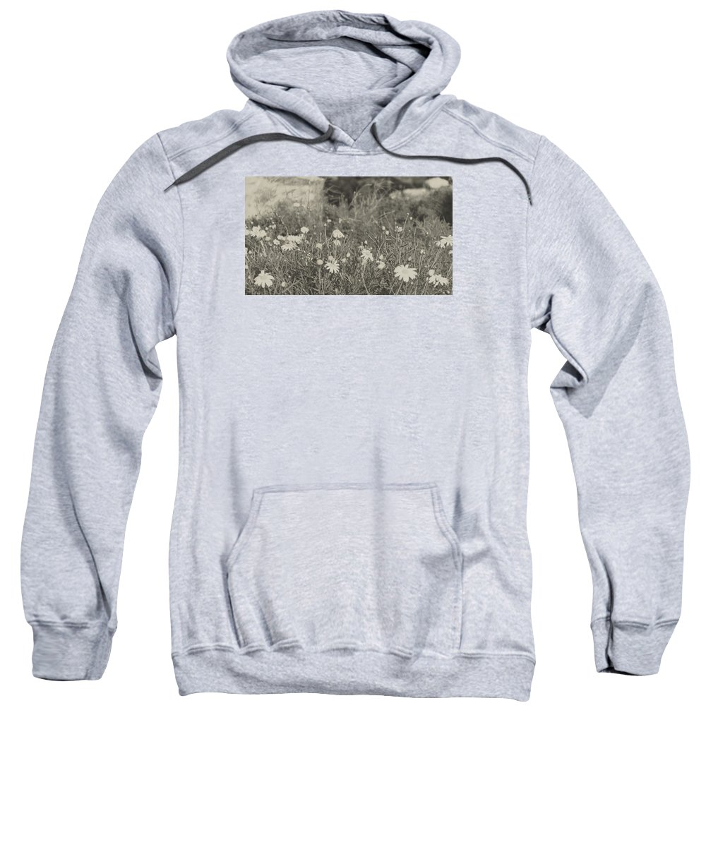 Nature Sweatshirt featuring the photograph Muted Beauty 4 by Sarah Jane Thompson