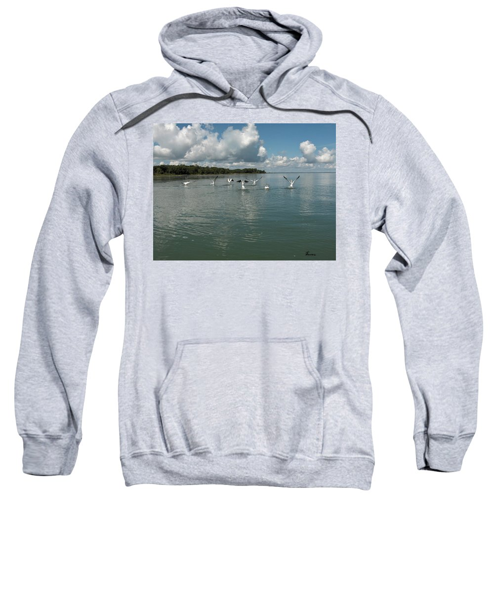 Pelicans Lake Water Trees Shore Beach Clouds Birds Water Foul Sweatshirt featuring the photograph My Pelicans by Andrea Lawrence