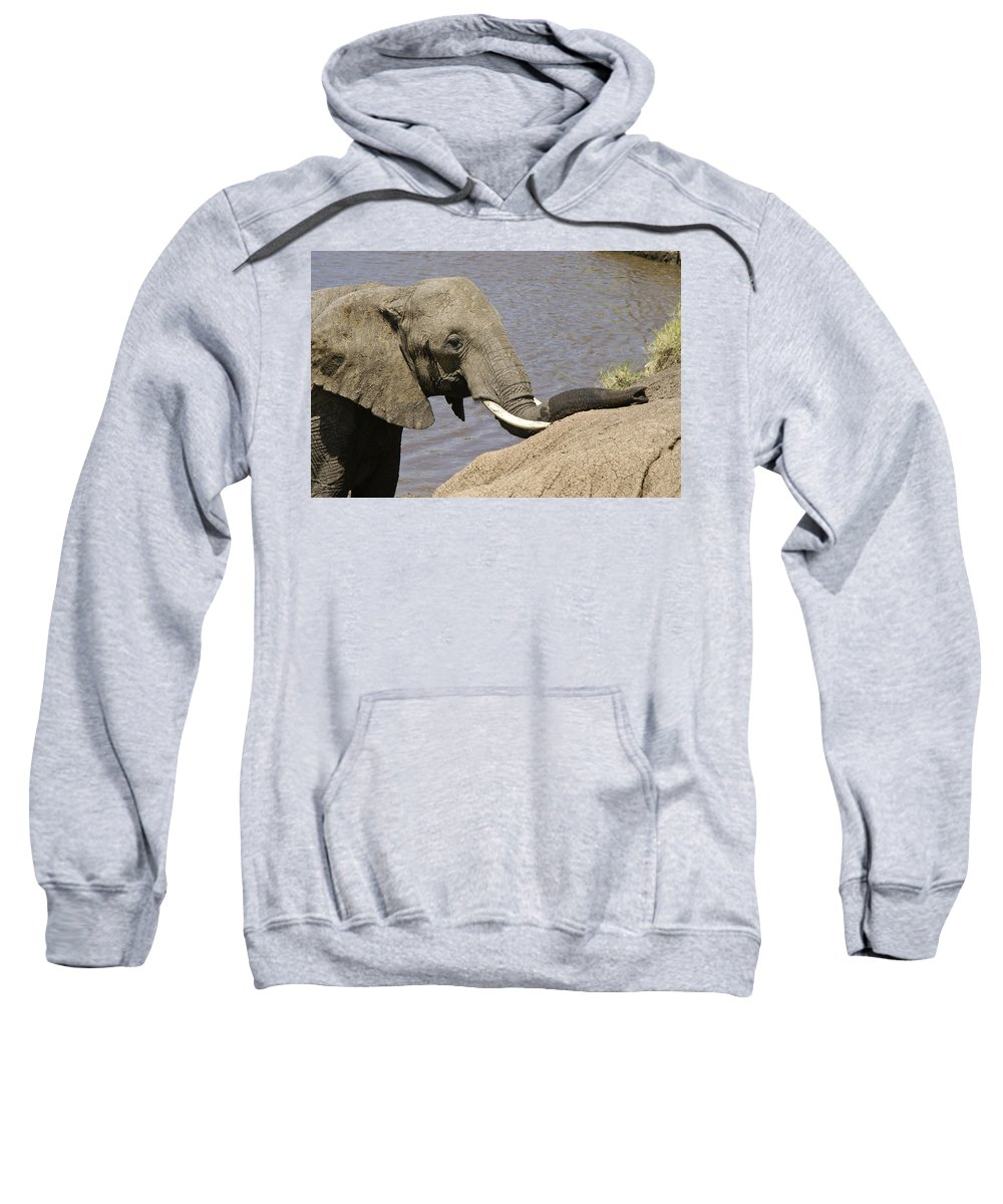 Africa Sweatshirt featuring the photograph My Trunk Needs Drying Out by Michele Burgess