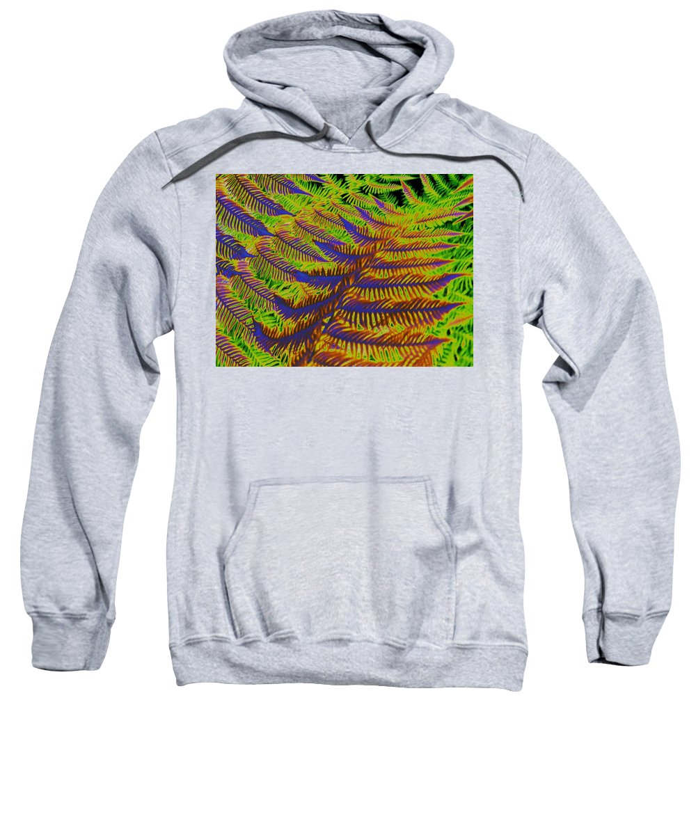 Fern Sweatshirt featuring the photograph Mystic Fern by Tim Allen