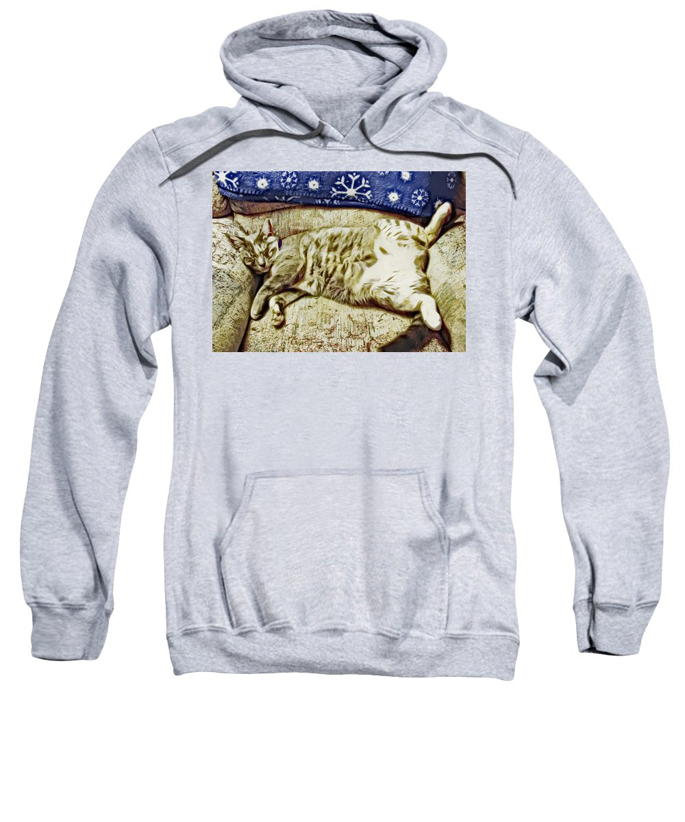 Cat Sweatshirt featuring the photograph Nap Position Number 16 by David G Paul