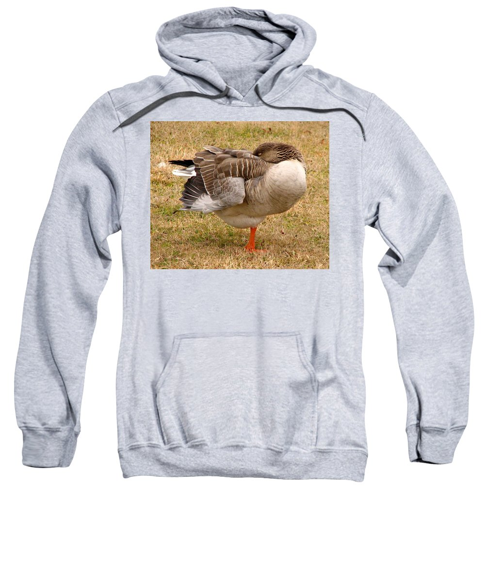 Goose Sweatshirt featuring the photograph Naptime by J M Farris Photography