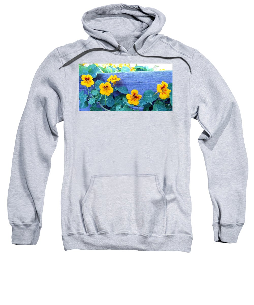 Nasturtiums Sweatshirt featuring the photograph Nasturtium Box by Will Borden