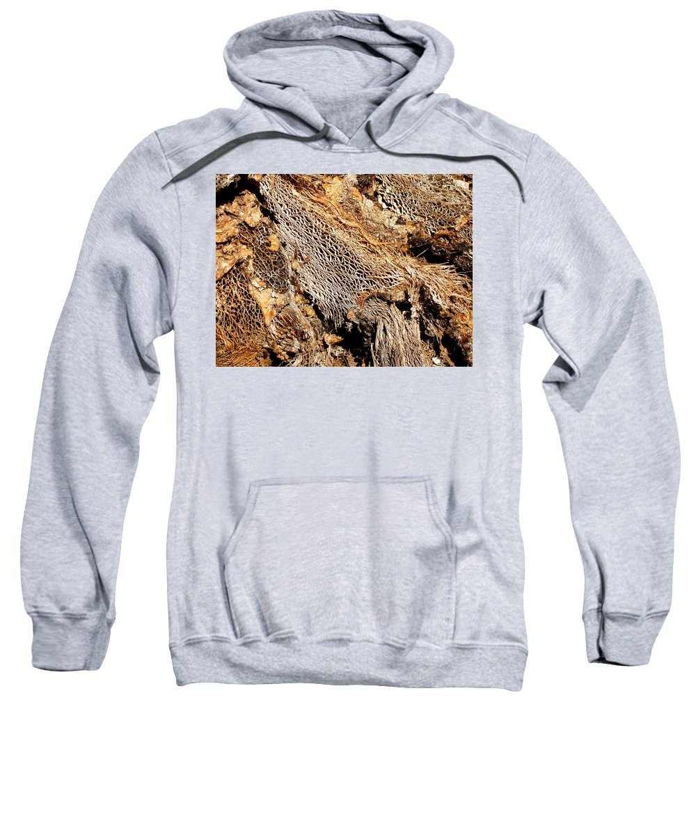 Texture Sweatshirt featuring the photograph Natural Textural Abstract by Wayne Potrafka