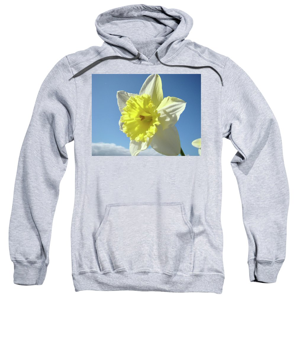 �daffodils Artwork� Sweatshirt featuring the photograph Nature Daffodil Flowers Art Prints Spring Nature Art by Baslee Troutman