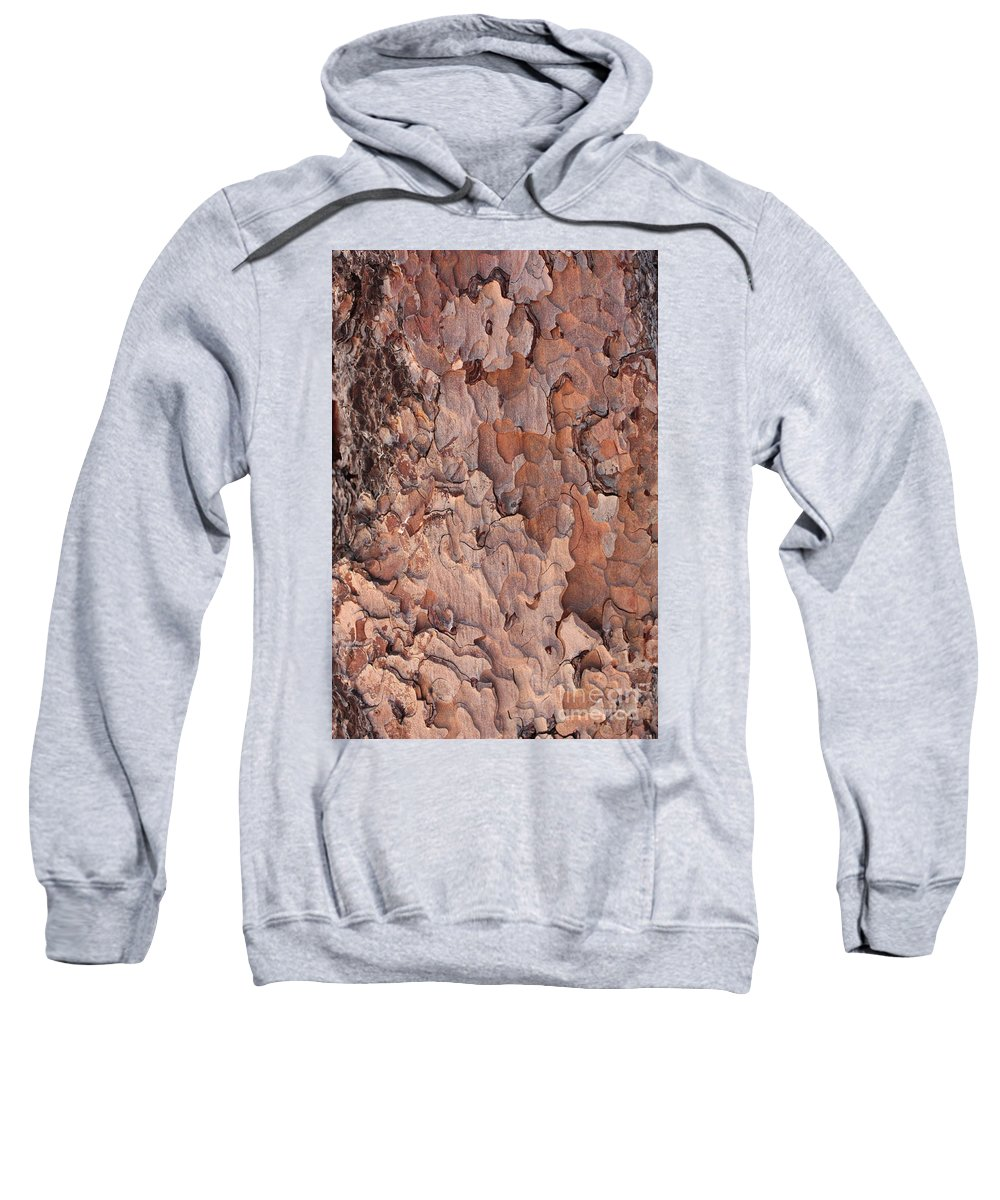 Bark Sweatshirt featuring the photograph Nature Puzzle by Carol Groenen