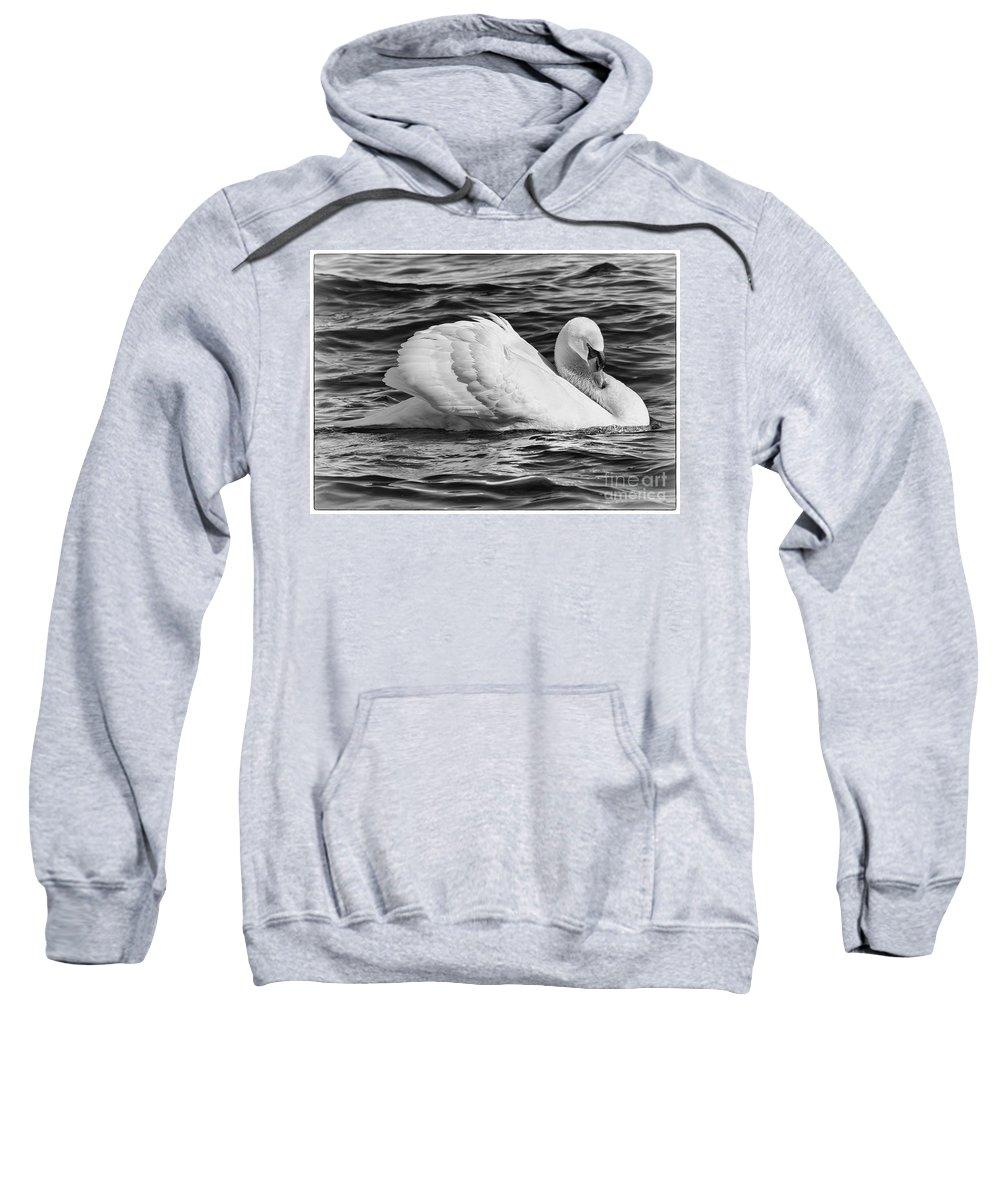 Mute Swan Sweatshirt featuring the photograph Nature's Elegance by Enrico Forlini