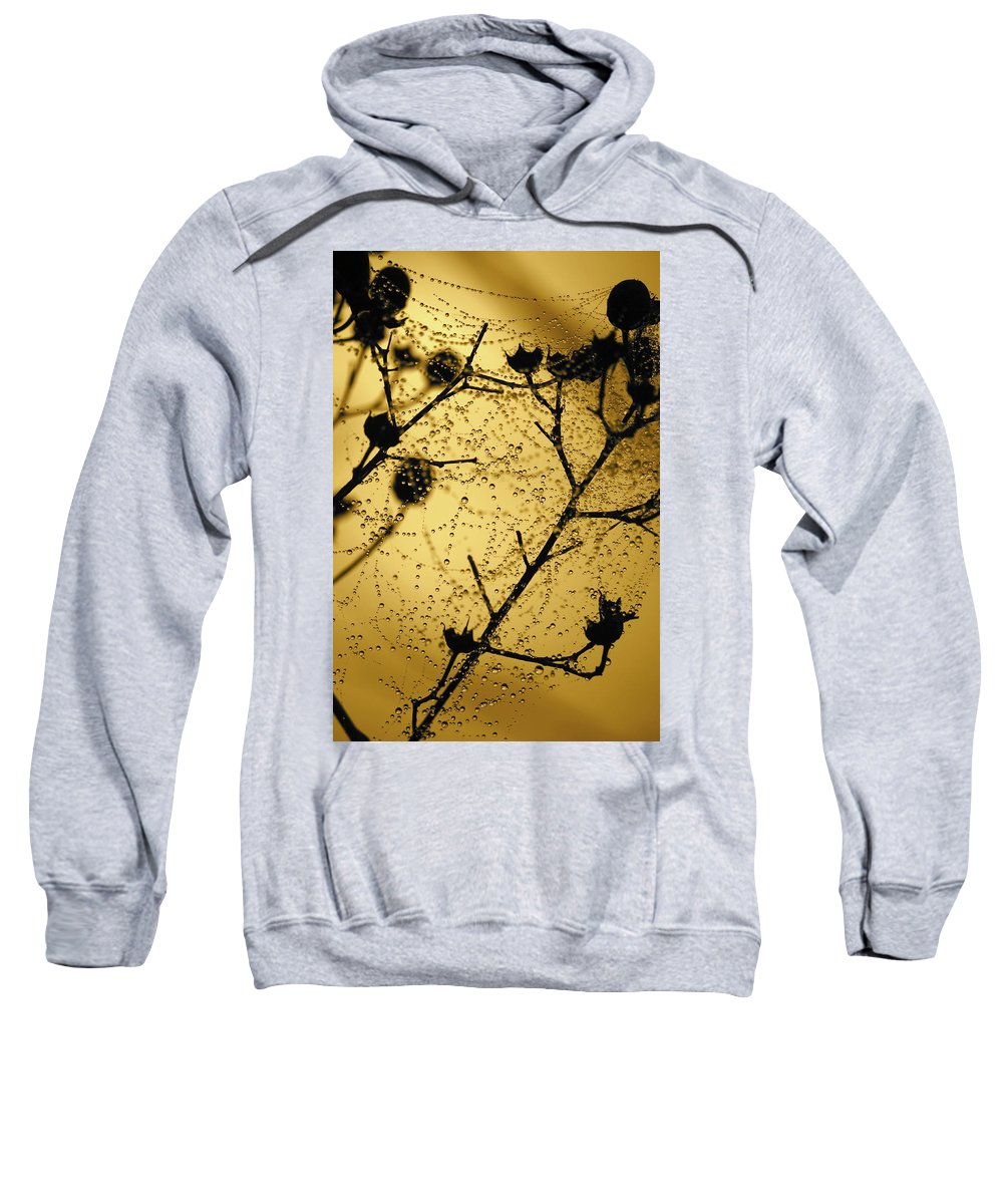 Dewdrops On Spider Web Sweatshirt featuring the photograph Nature's Lace Curtain by Carol Groenen