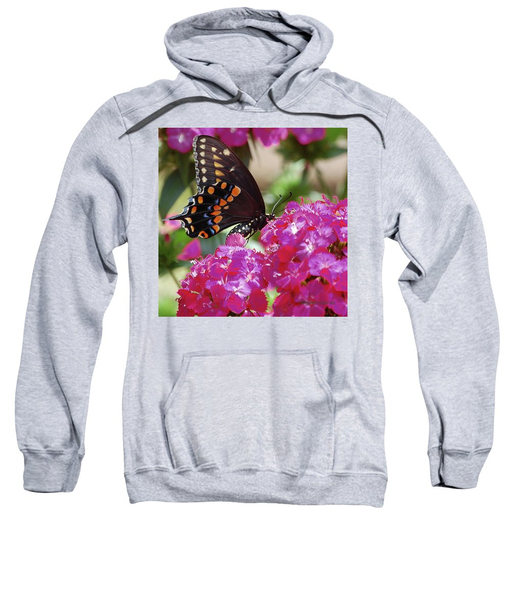 Butterfly Sweatshirt featuring the digital art Nectar Of Pink Passion by DigiArt Diaries by Vicky B Fuller