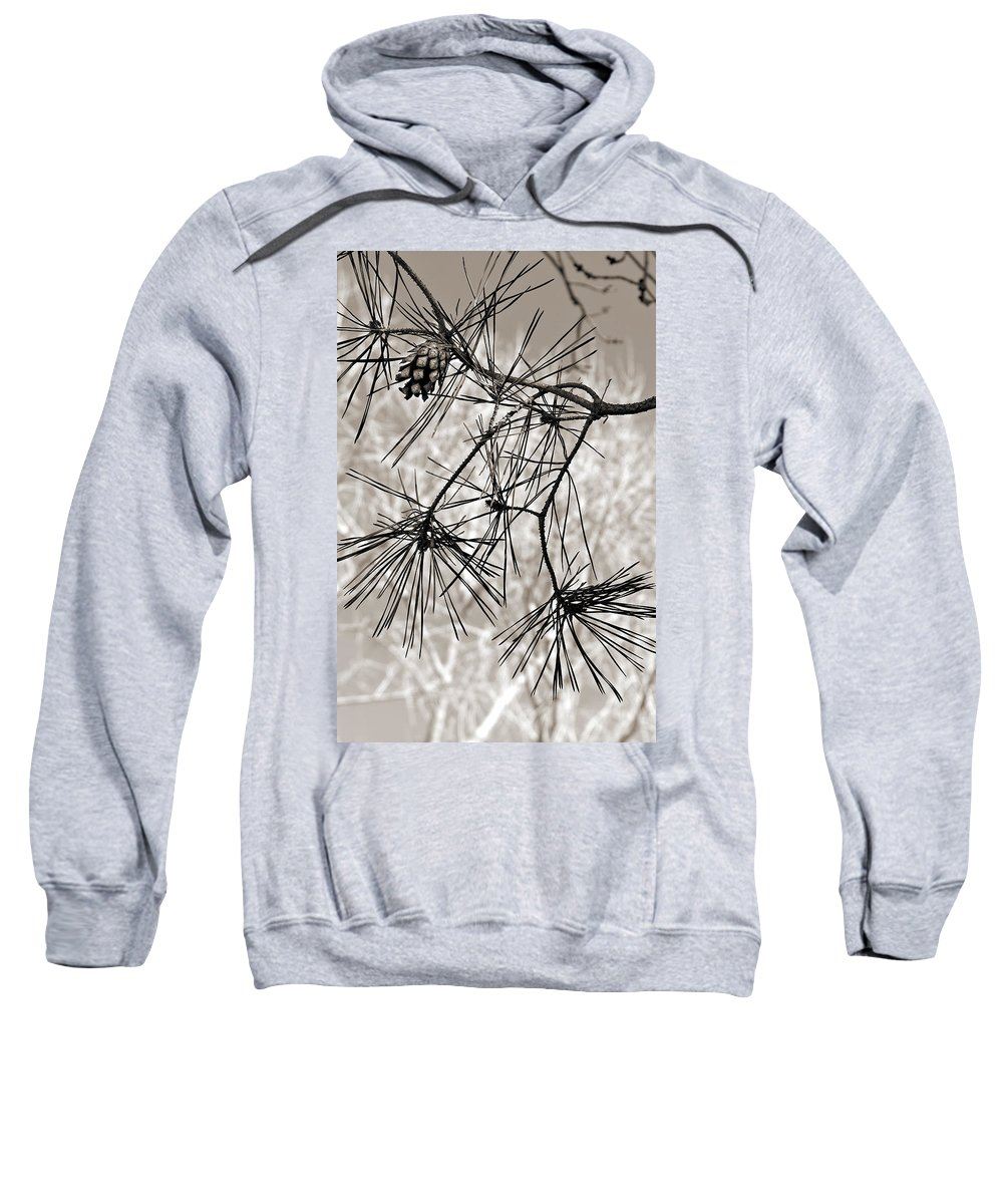 Tree Sweatshirt featuring the photograph Needles Everywhere by Marilyn Hunt