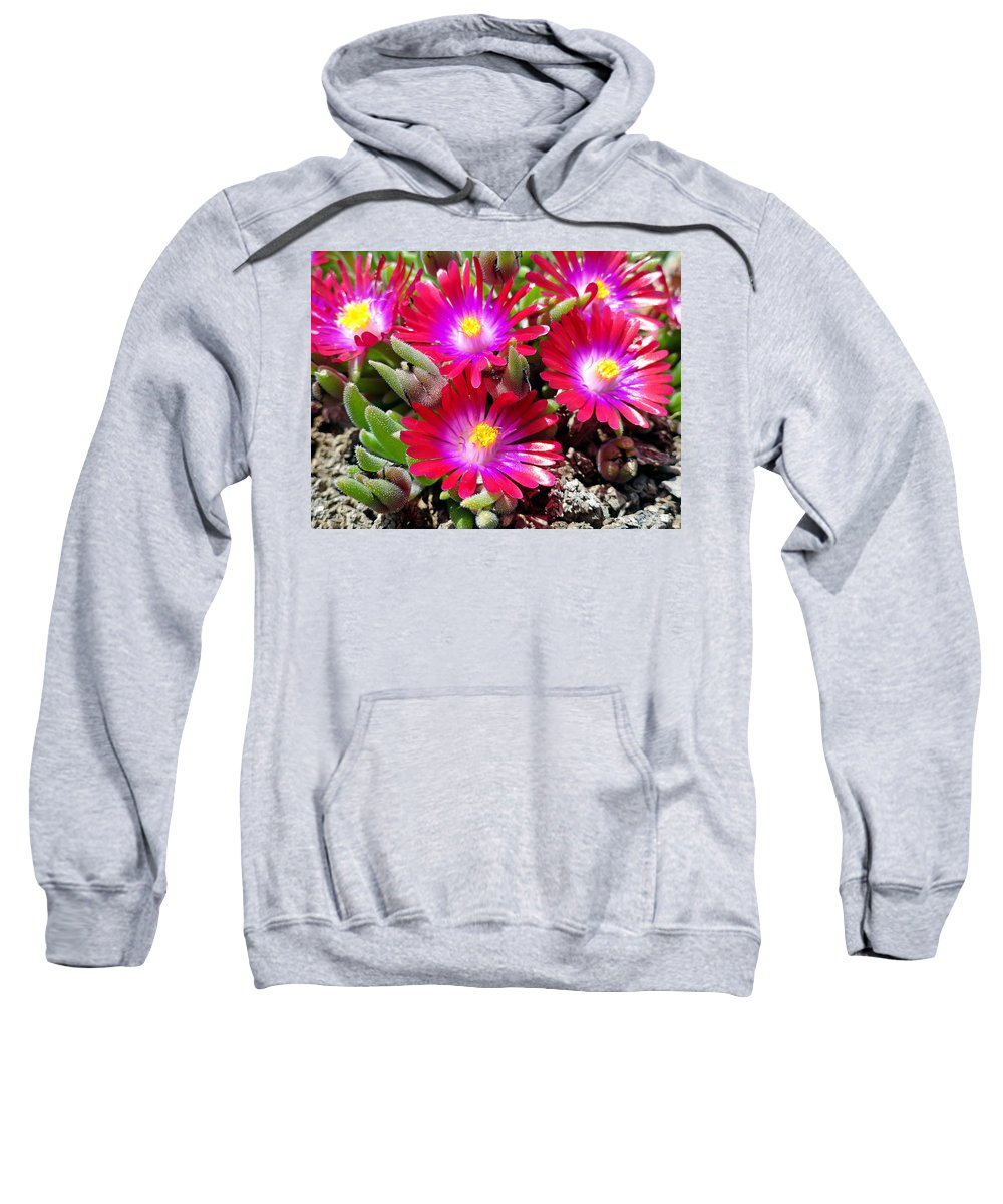 Neon Sweatshirt featuring the photograph Neon Glow by Robert Meyers-Lussier