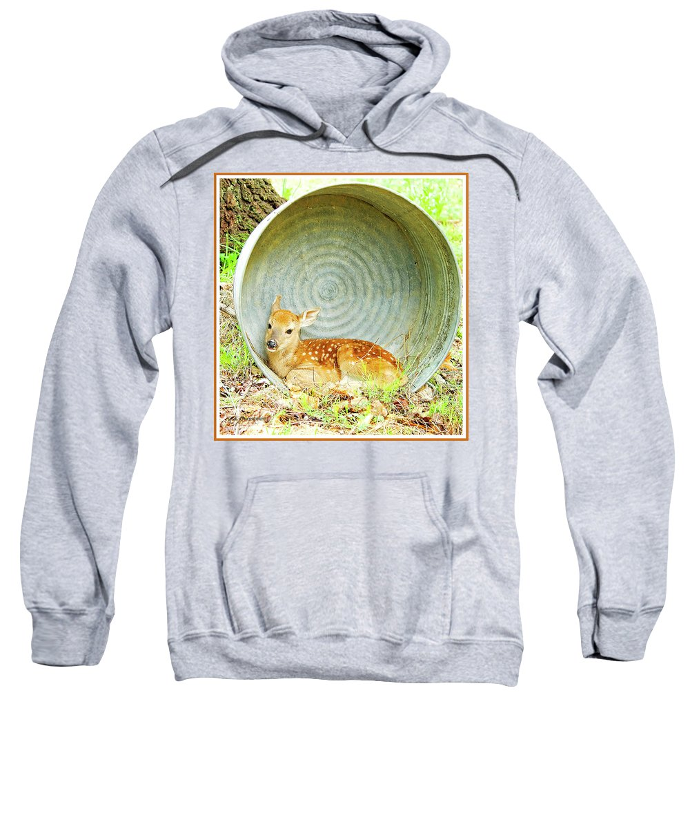 Fawn Sweatshirt featuring the photograph Newborn Fawn Finds Shelter In An Old Washtub by A Gurmankin