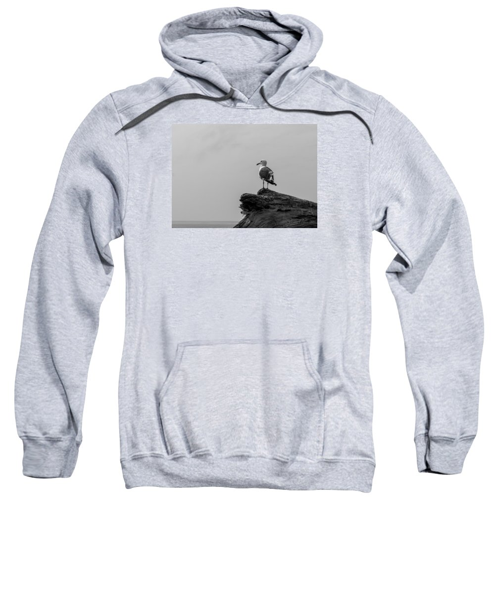Emma Wood Sweatshirt featuring the photograph Gull On Driftwood Bw by Patti Deters