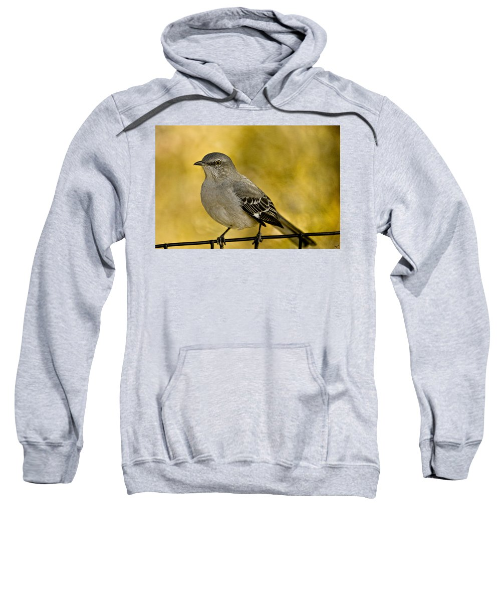 Bird Sweatshirt featuring the photograph Northern Mockingbird by Chris Lord