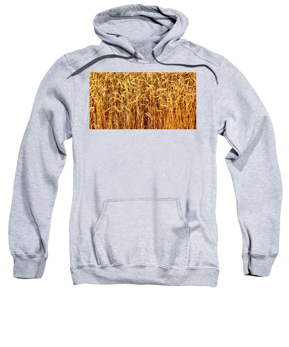 Not Just In Kansas Sweatshirt featuring the photograph Not Just In Kansas by Ed Smith