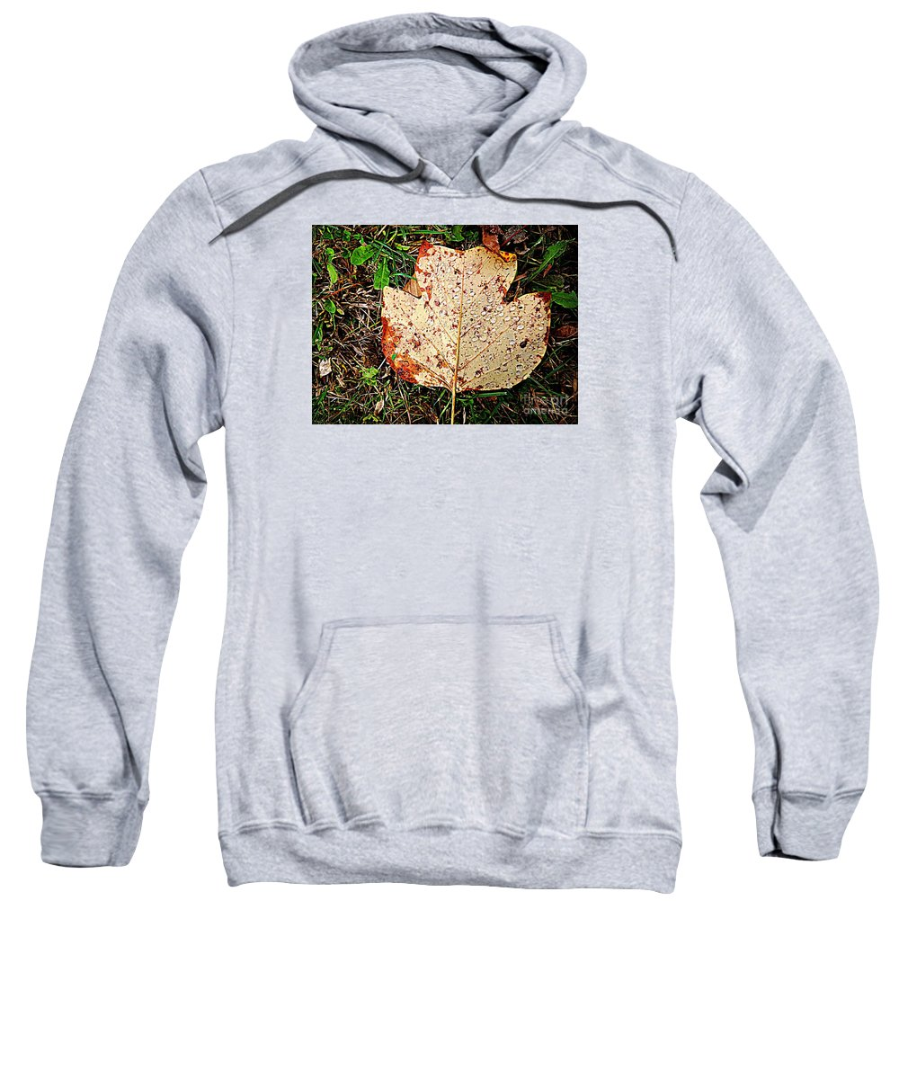 November Sweatshirt featuring the photograph November Rain by Angela Weis