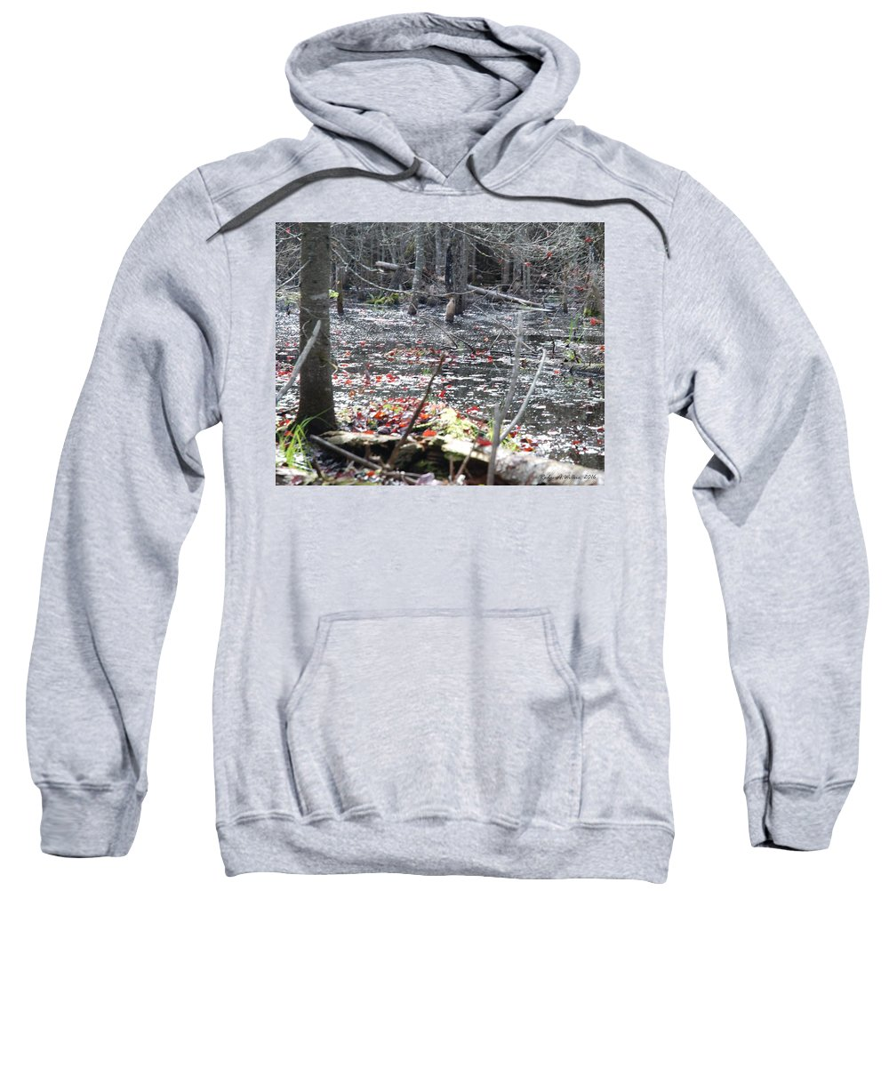 Canada Sweatshirt featuring the photograph November Woods 1 by Rodger Wilkie