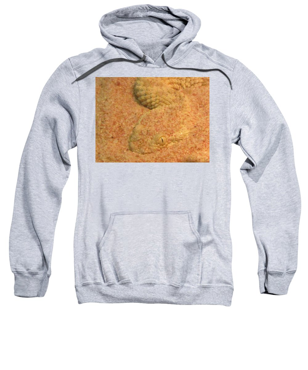 Snake Sweatshirt featuring the photograph Now You See Me by Sarah Houser
