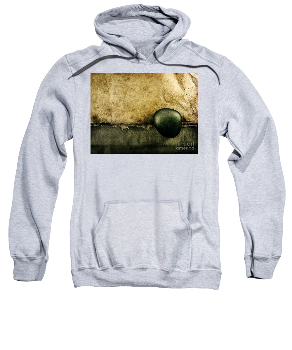 Dipasquale Sweatshirt featuring the photograph Obligatory by Dana DiPasquale