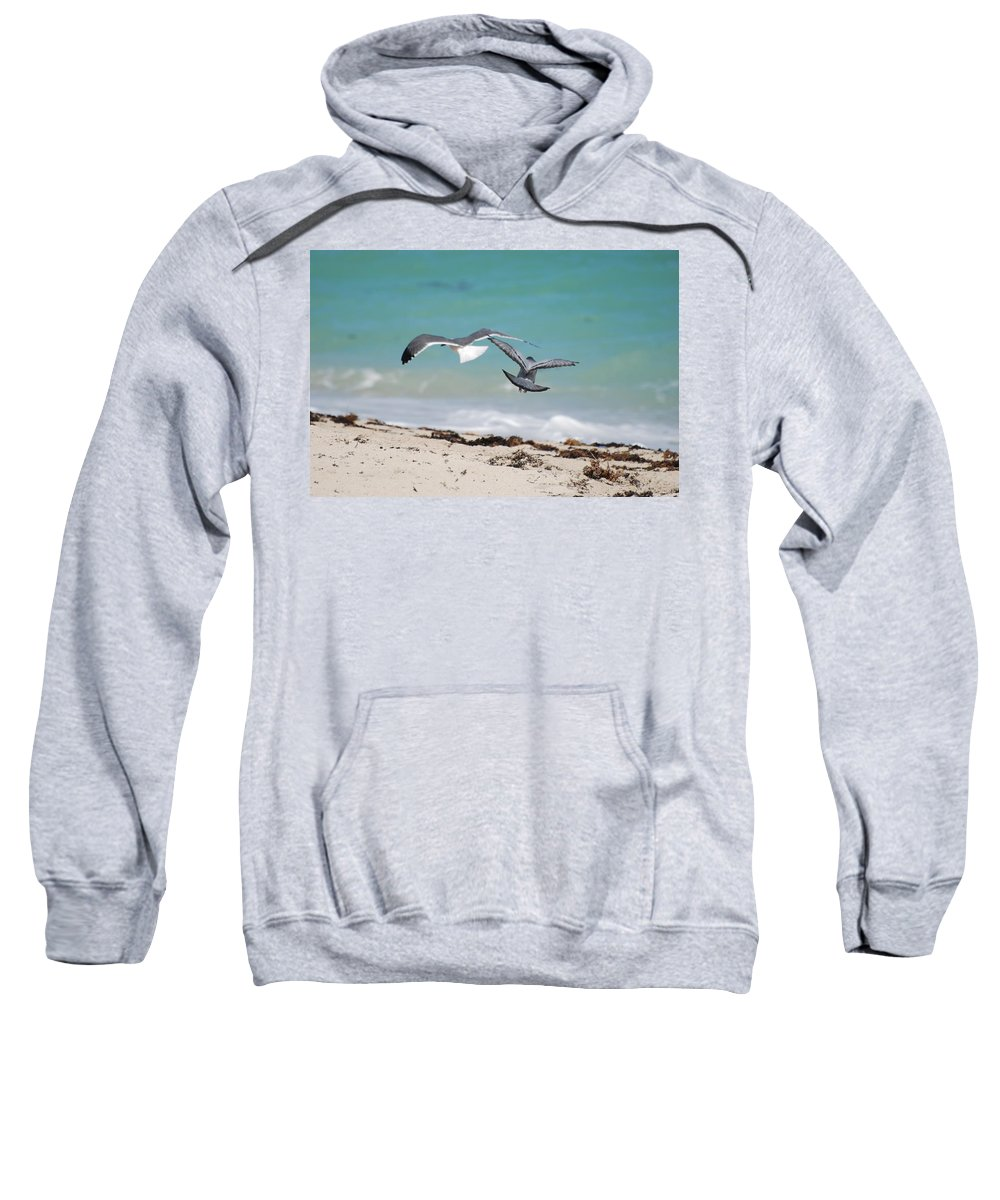 Sea Scape Sweatshirt featuring the photograph Ocean Birds by Rob Hans