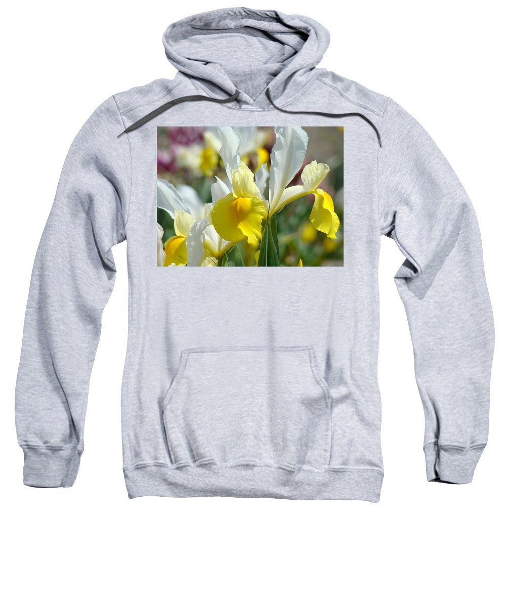 Iris Sweatshirt featuring the photograph Office Art Botanical Iris Flower Garden Giclee Prints Baslee Troutman by Baslee Troutman