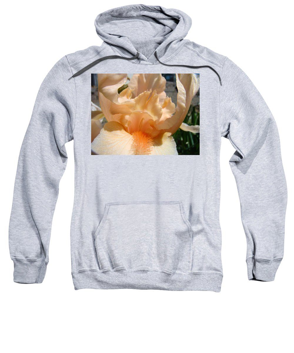 �irises Artwork� Sweatshirt featuring the photograph Office Art Irises Flower Orange Iris Flower Giclee Art Prints Baslee Troutman by Baslee Troutman