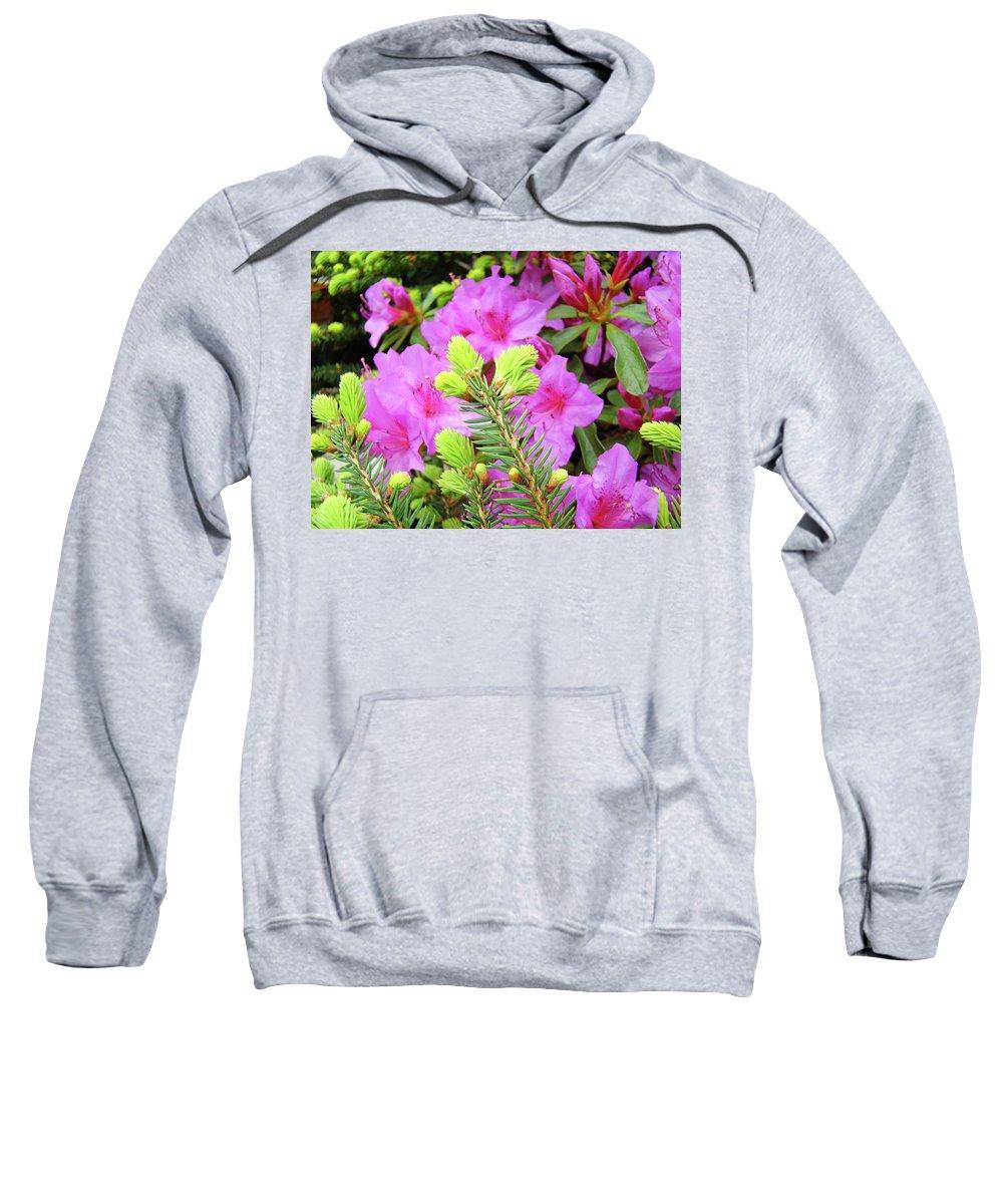 Office Sweatshirt featuring the photograph Office Art Pine Conifer Pink Azalea Flowers 38 Azaleas Giclee Art Prints Baslee Troutman by Baslee Troutman