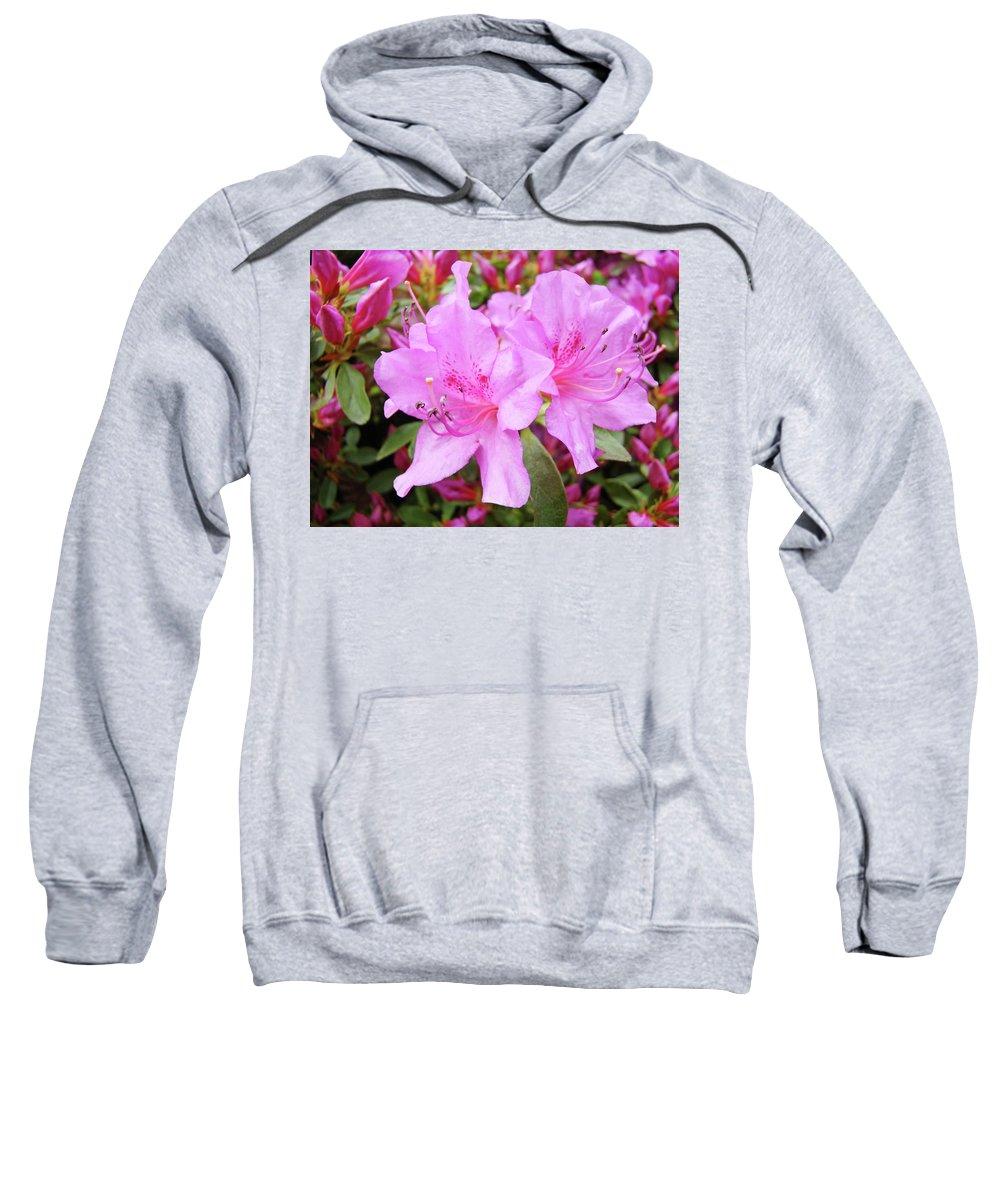 Flower Sweatshirt featuring the photograph Office Art Pink Azalea Flower Garden 3 Giclee Art Prints Baslee Troutman by Baslee Troutman