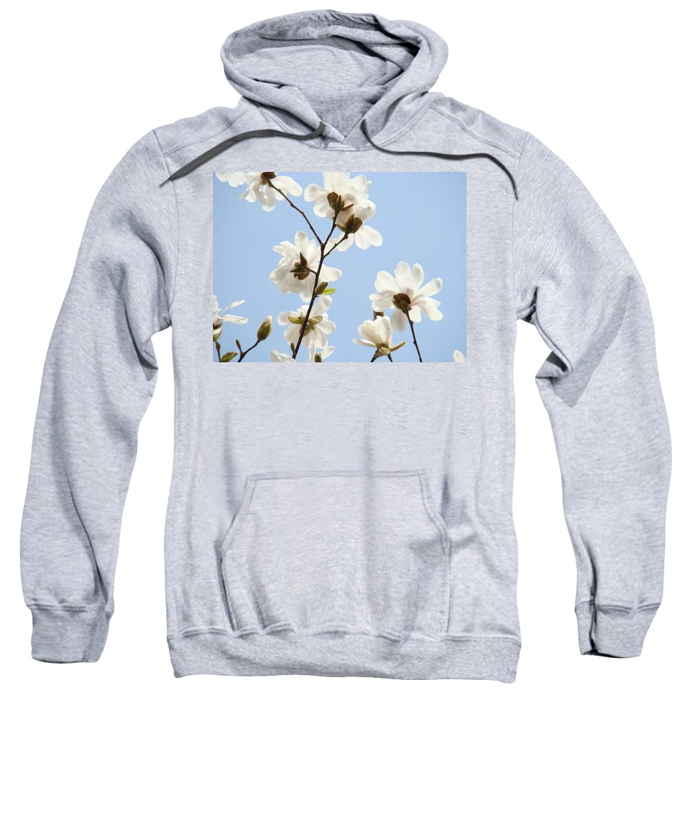 Blue Sweatshirt featuring the photograph Office Art Prints Blue Sky White Magnolia Flowers 38 Giclee Prints Baslee Troutman by Baslee Troutman
