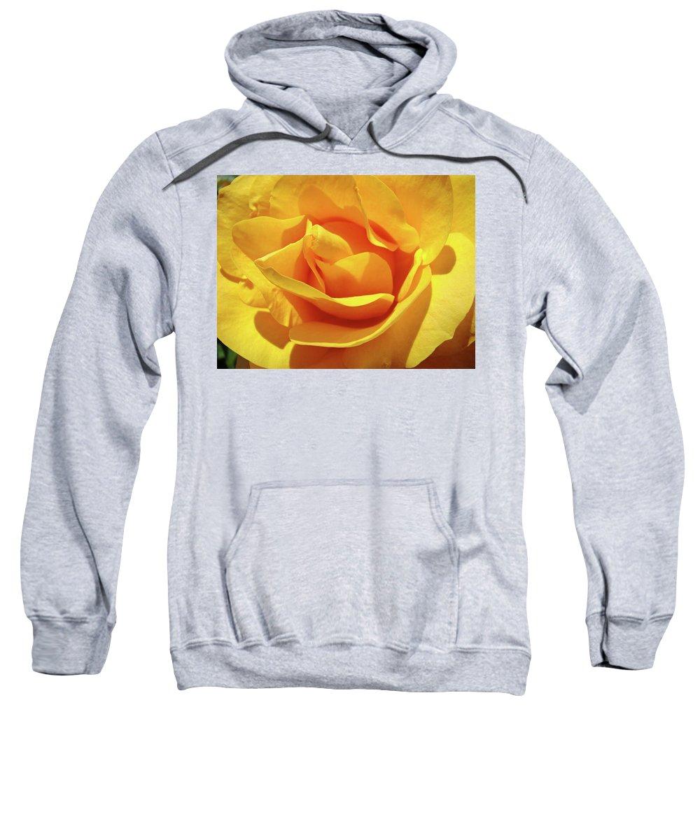 Rose Sweatshirt featuring the photograph Office Art Prints Roses Orange Yellow Rose Flower 1 Giclee Prints Baslee Troutman by Baslee Troutman