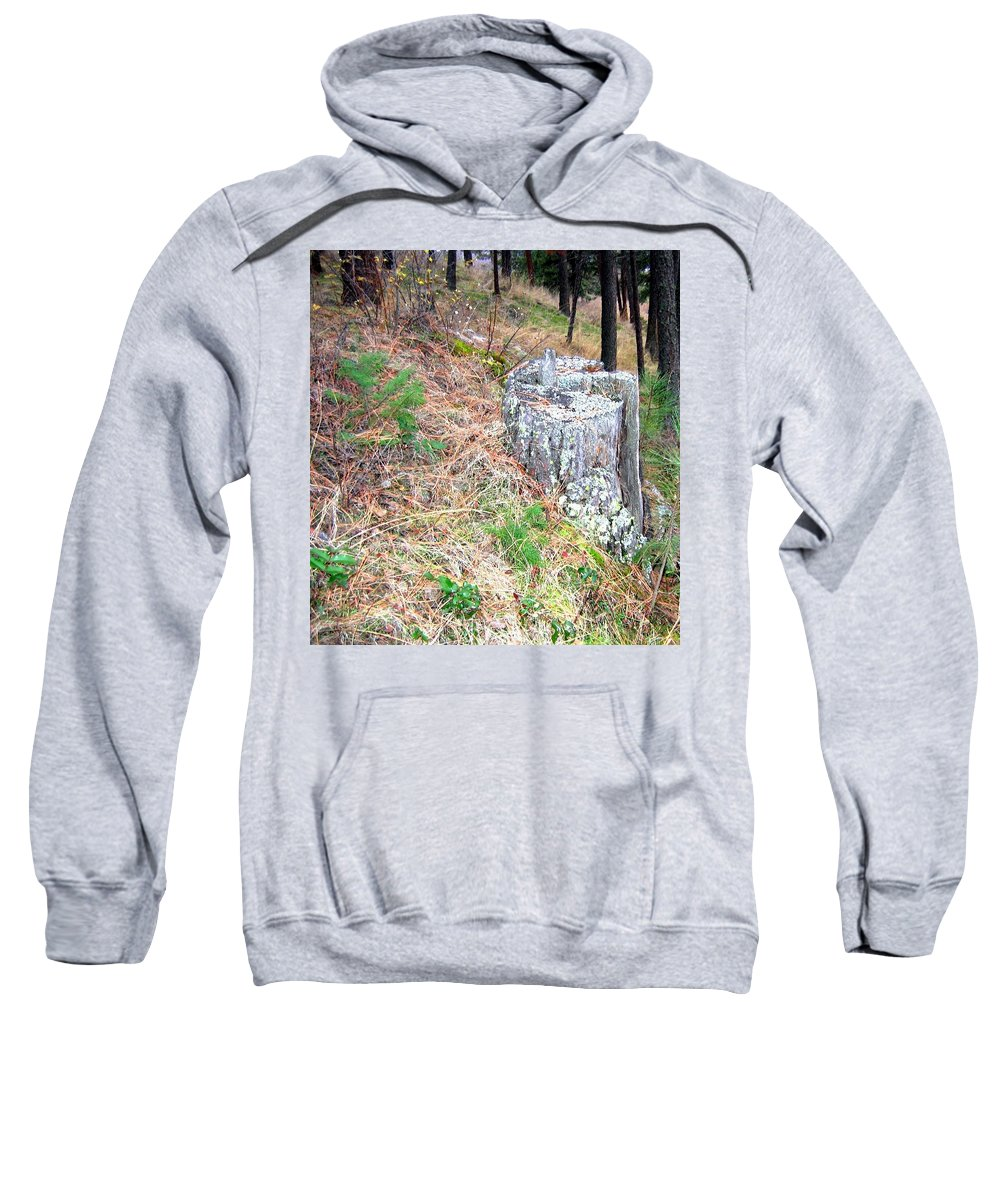 Forest Sweatshirt featuring the photograph Old Pine Stump by Will Borden