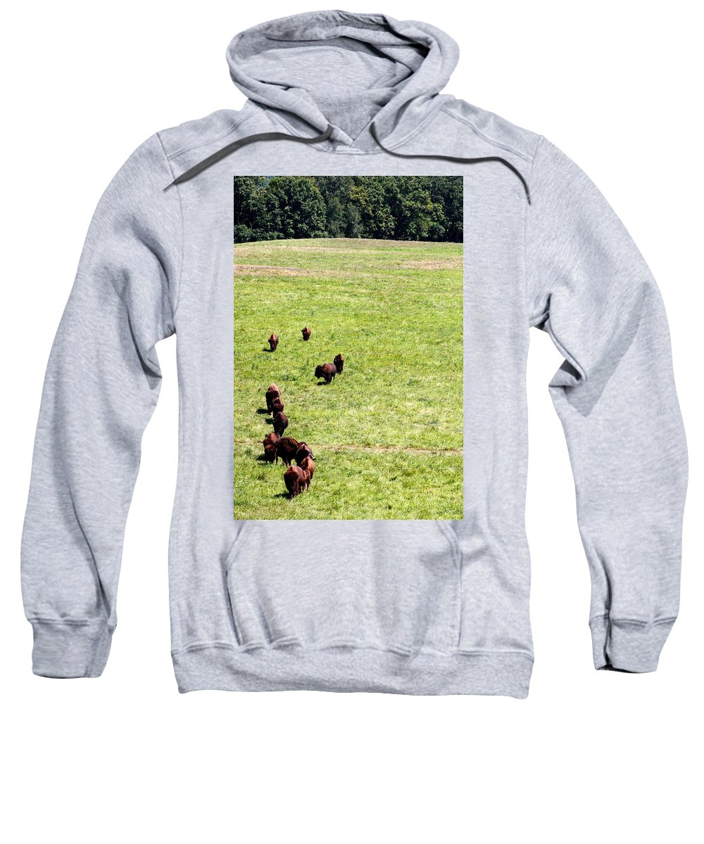 Buf Sweatshirt featuring the photograph Old Prairie Kings by Alan Look