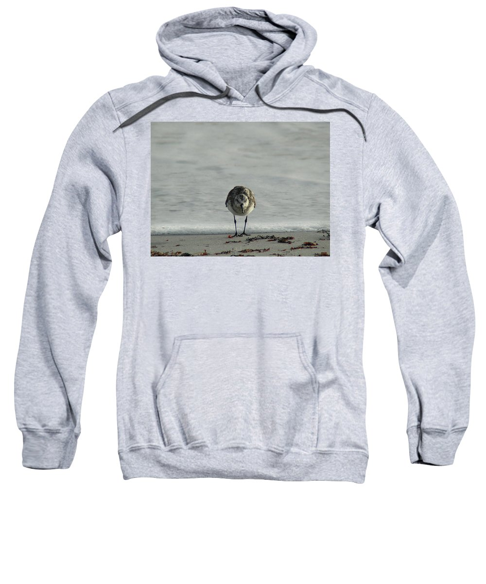 Ocean Sweatshirt featuring the photograph On Guard by Cathi Abbiss Crane