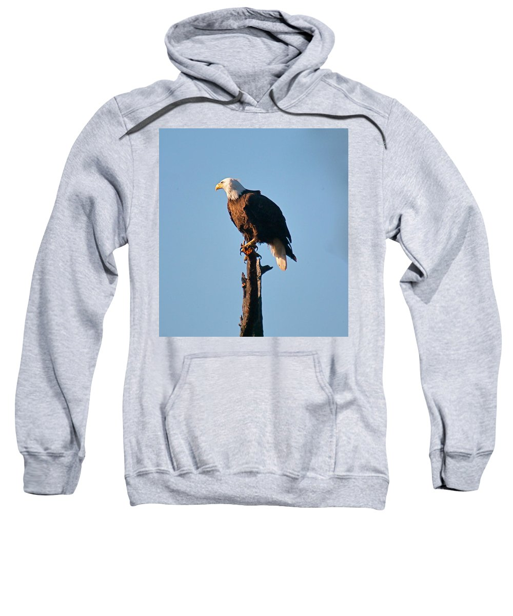 Eagle Sweatshirt featuring the photograph On The Look Out by Robert Pearson