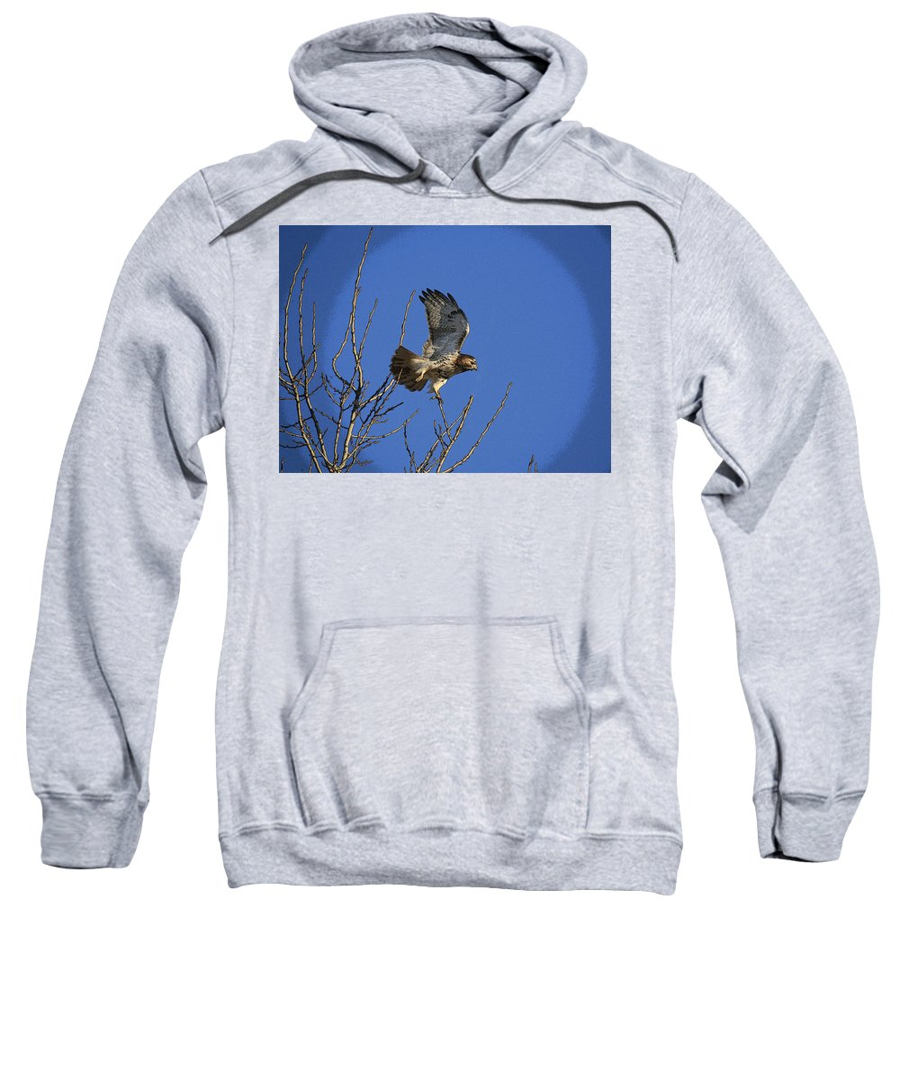 Hawk Sweatshirt featuring the photograph On The Move by Robert Pearson