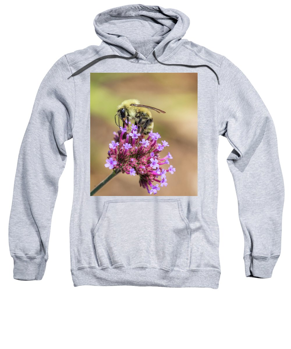 Bumble Bee Sweatshirt featuring the photograph On Top Of The World - Bee Style by Christy Cox