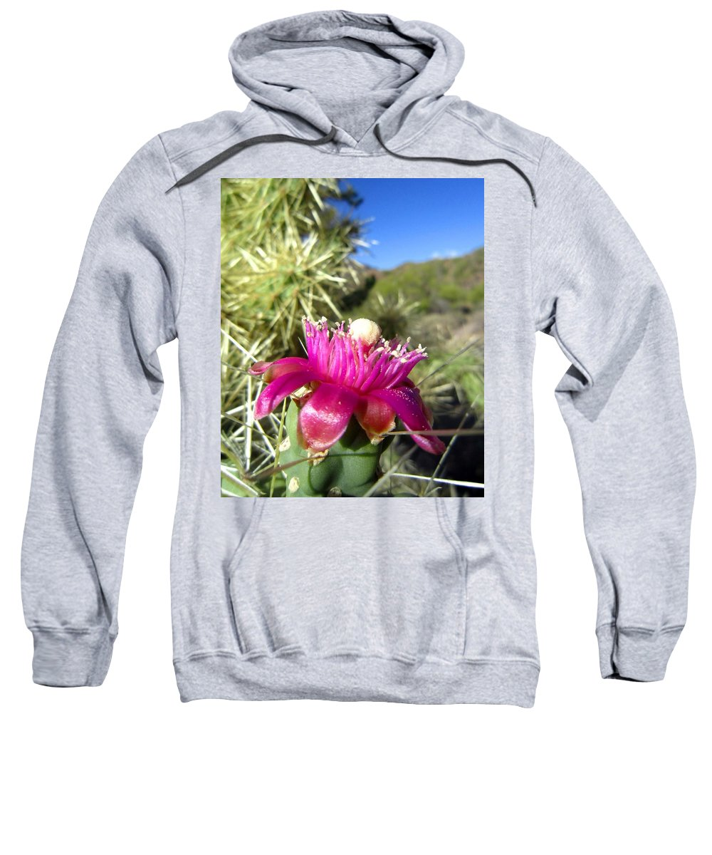Cactus Sweatshirt featuring the photograph Opening Night by Nelson Strong