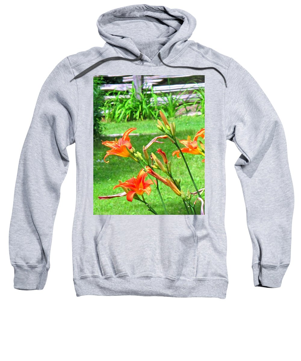 Lilly Sweatshirt featuring the photograph Orange And Green by Ian MacDonald